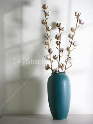 92 Best Images About Cotton Stem Vases On Pinterest Iphone Wallpapers Free Beautiful  HD Wallpapers, Images Over 1000+ [getprihce.gq]
