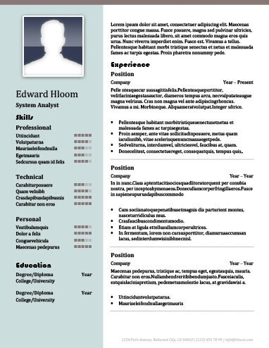 2 column cv template 2 cv template pinterest resume templates