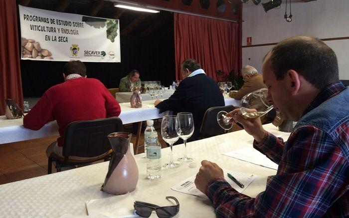 El Ayuntamiento de La Seca convoca el Premio Sarmiento 2016 al mejor vino verdejo de la D.O.Rueda