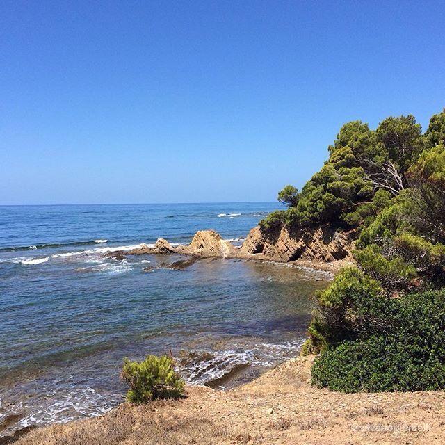 Punta Licosa (Salerno) | Süditalien, Nationalpark, Bilder