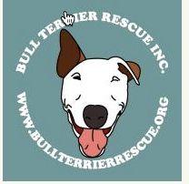Bull Terrier Loves Supports the Bull Terrier Rescue http://bullterrierlove.com/support-bull-terrier-rescue/