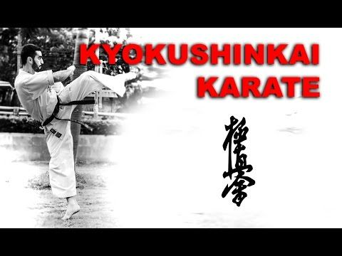 Fight Vision Season 3 - Mohamad Harake Kyokushin Karate