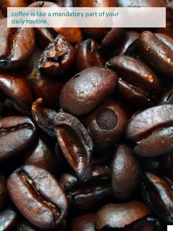 See The Best K Cup Coffee Fair Trade Coffee Beans Fair Trade Coffee Beans Gourmet Coffee Beans Impressive Recipes