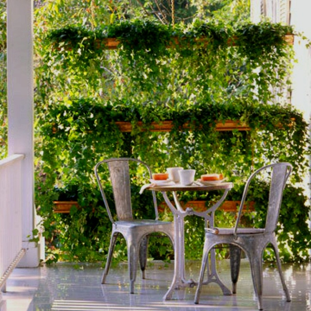 Good Porch Garden That Would Create Privacy In The City!