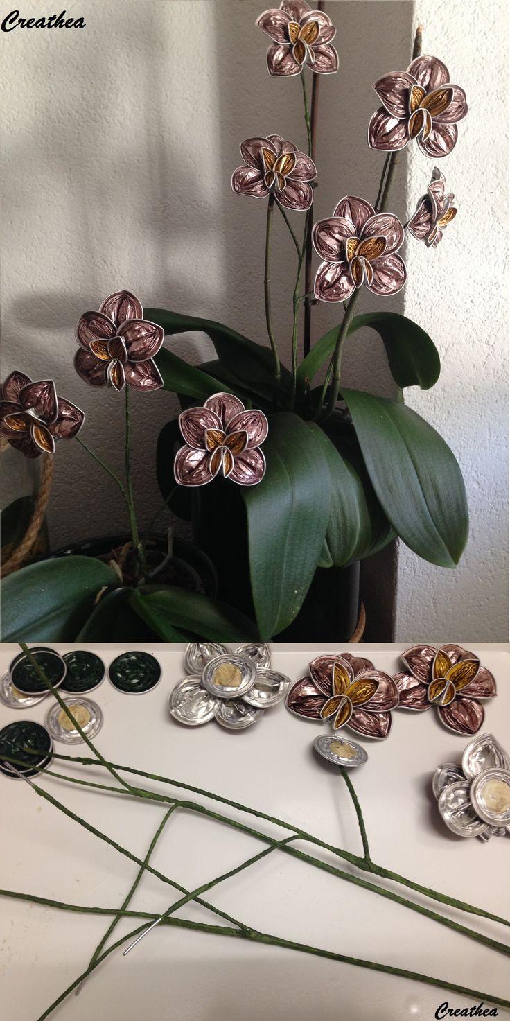 Nespresso:Ramo di Orchidea!