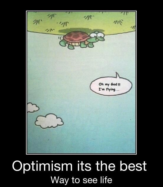 I wish I was this turtle.