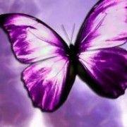 Η πεταλούδα και η ψυχή