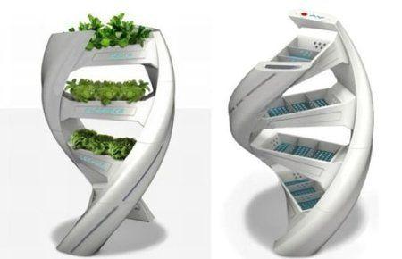jardines verticales 9