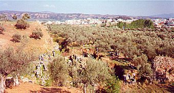 http://en.wikipedia.org/wiki/History_of_Sparta