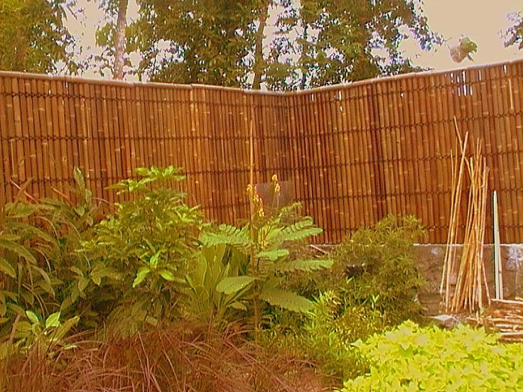 13 best natural bamboo fencing images on pinterest fence for Natural privacy fence