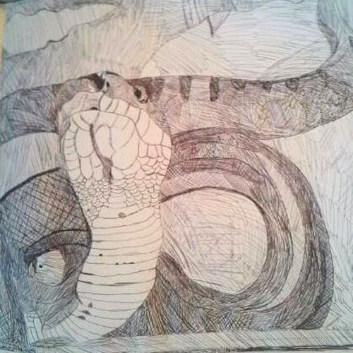 July 2014 - Drew one of my sister's snakes Chunk :)