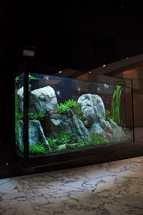 13394 best aquascape images on pinterest fish tanks for Fish aquarium rocks
