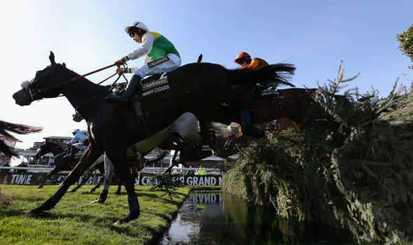 Grand National 2016: Full list of horses odds for race at Aintree