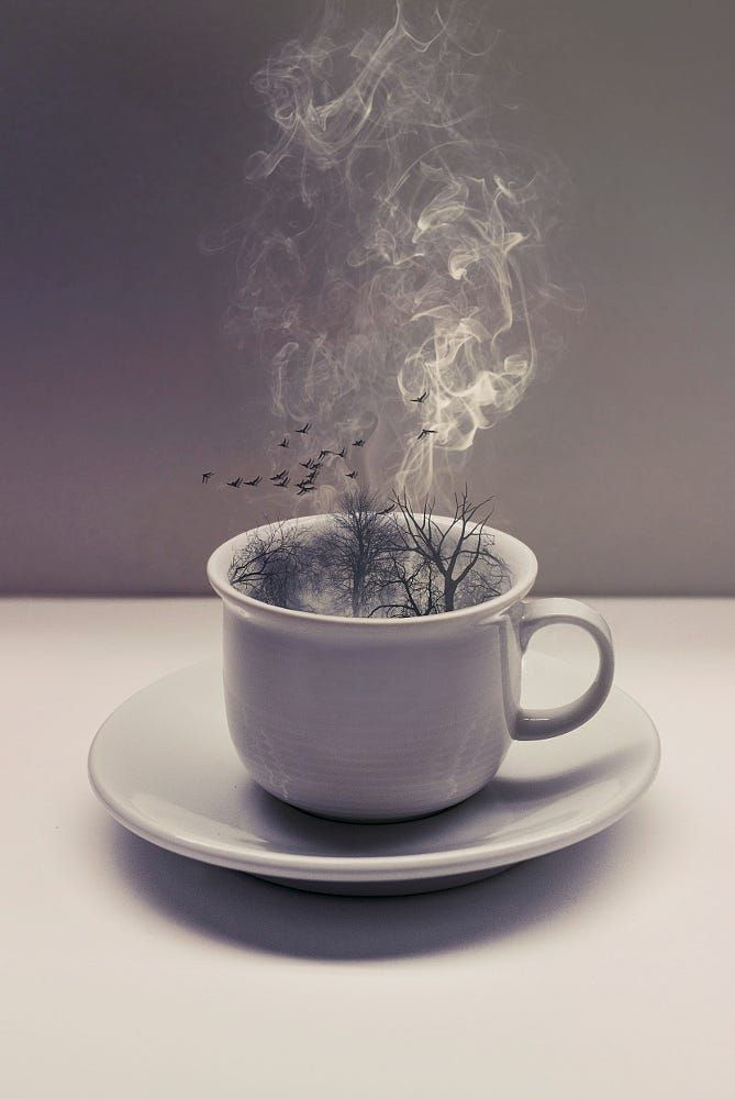 A cup of little world. by Megan Glc on 500px