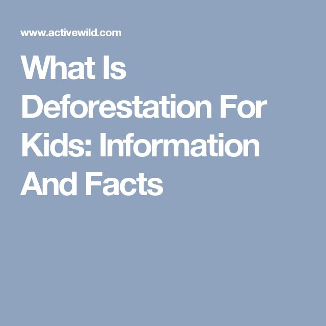 deforestation essay for kids About half of the world's countries have halted or reversed forest loss so the answer to the question of whether deforestation is inevitable must be 'no.