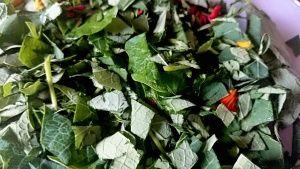 ExHerbis: Lichořeřišnice - vyrobte si zdravé a chutné pesto