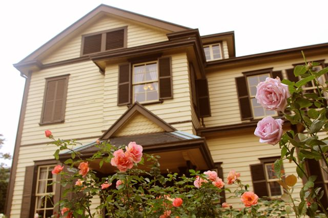 秋のバラ 外交館の家 2015年10月17日撮影