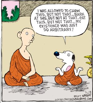 Zen Cartoon Zen Cartoons Studying Funny Jokes Funny