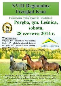 Końska impreza 2014 w Porębie Plakat