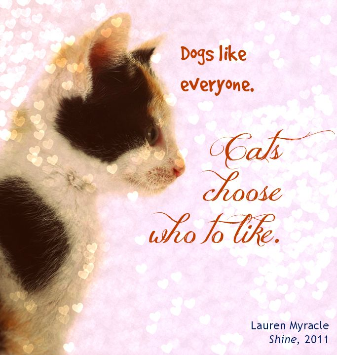 ya fiction | cats vs. dogs | book quotes | Lauren Myracle ...