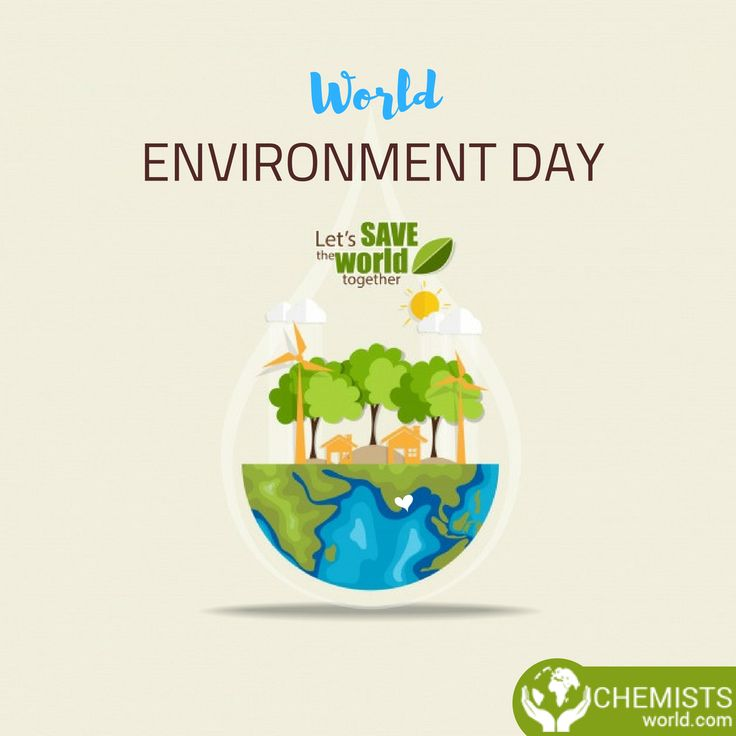 a talk on world environment day Delhi does not walk the talk on world environment day: cse analysis delhi does not walk the talk when it comes to following the un message on this world environment day-consume with care.