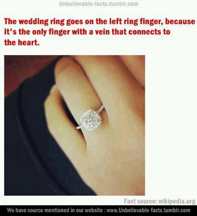 Ring On Left Ring Finger: Pin By Mariam Khanji On « Random »
