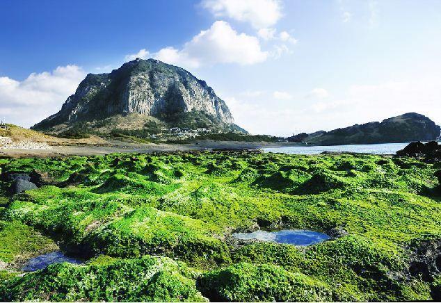 제주도 (Jeju Island), A Volcanic Island Situated Off The Southern Coast Of The Korean Peninsula, Republic Of Korea