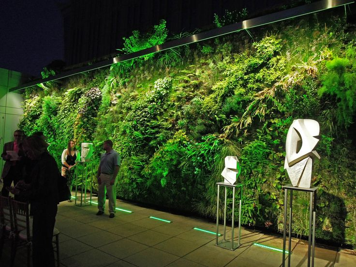 Green wall at the Foundation for the Carolinas, Charlotte, NC