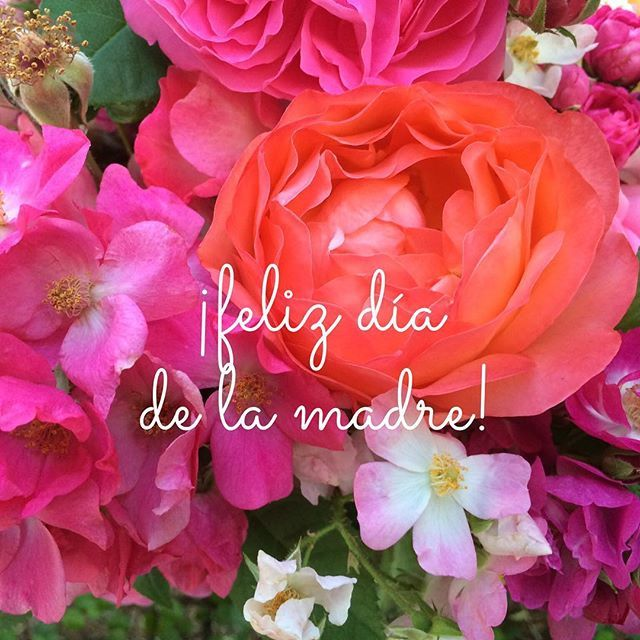 Feliz Dia De La Madre Its Mothers Day In Mexico So We Wanted To Send Out A Note Of Our Appreciation For The Mamas And Nanas Dia De La Madre
