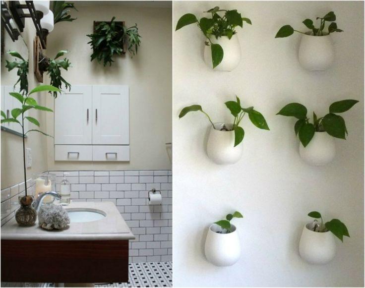 Más de 20 ideas increíbles sobre Pflanzen fürs bad en Pinterest - pflanzen für badezimmer