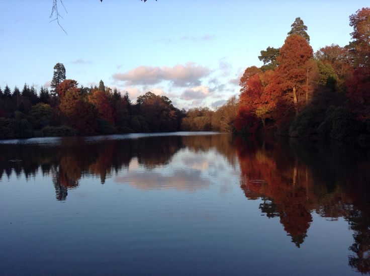 Sheffield Park, East Sussex. National Trust. Best looking in Autumn