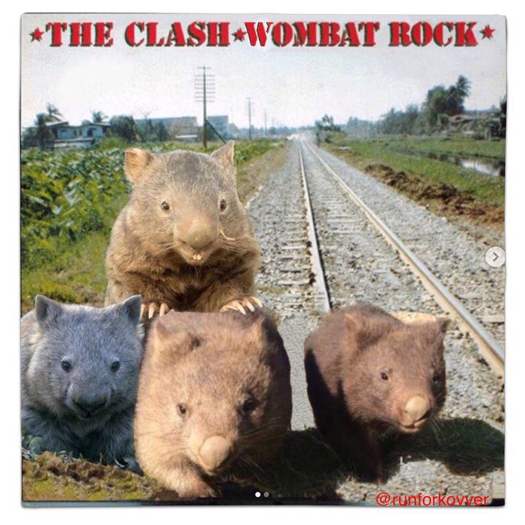 The Clash Combat Rock / Wombats Vinyl Mash Up Parody by runforcover #mashup #photoshop #parody #album #cover #lp #record #vinyl #scifi #nerd #music #movie #geek #funny #movies #film #movie #films #mashupart #onesheet #cinema #albumcover #album #cover #lp #record #vinyl #whythelongplayface #whythelpface #photoshop #theclash #wombat #wombats #joestrummer #punk