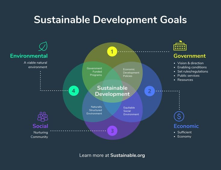 Sustainable Development Goals Venn Diagram Infographic