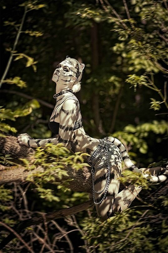 Best The Human Canvas Images On Pinterest Body Painting - Amazing body art transforms people animals human organs
