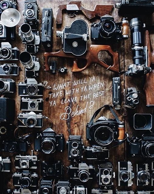 amante de la fotografia