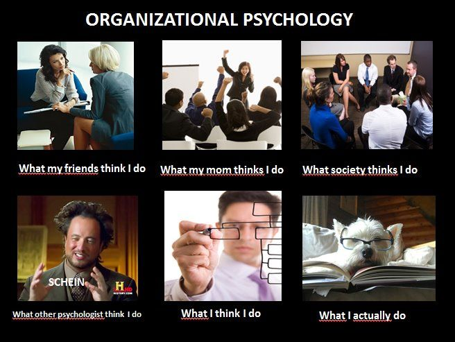 Organizational Psychology what is major