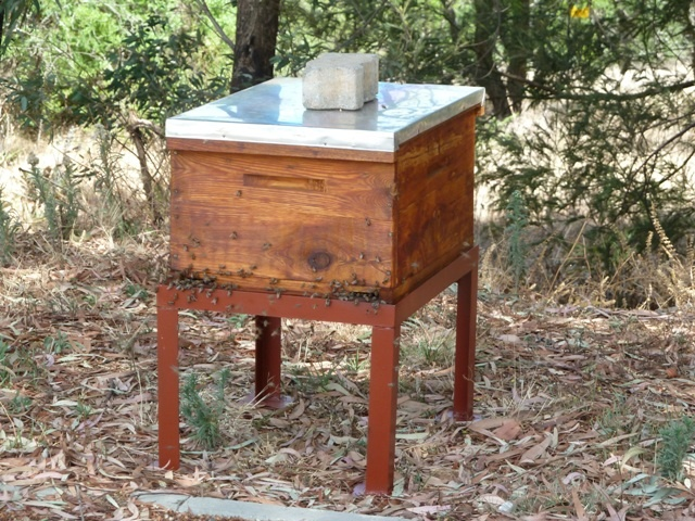 One of our Beehives Furniture, Table, Home decor