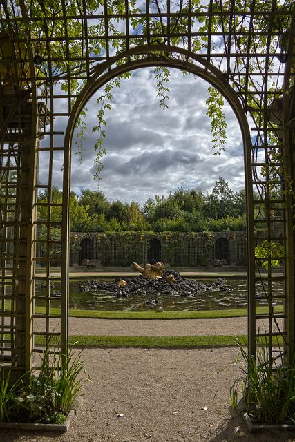 25 best ideas about jardin versailles on pinterest for Arbres jardin du luxembourg