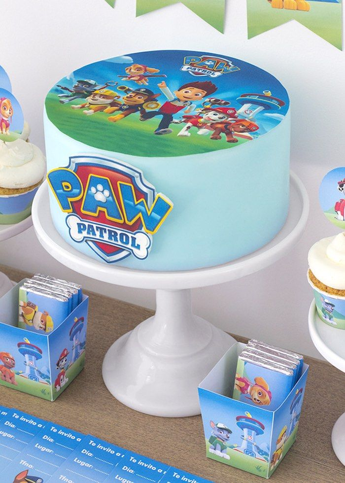 Birthday cake from Paw Patrol Birthday Party with FREE printables at Kara's Party Ideas. See more at karaspartyideas.com!