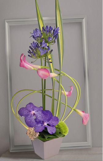 les 25 meilleures id es de la cat gorie fleurs d 39 orchid es sur pinterest orchid es roses. Black Bedroom Furniture Sets. Home Design Ideas