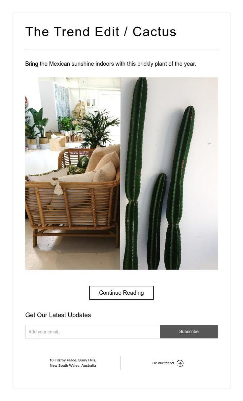 The Trend Edit / Cactus