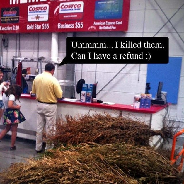 17 Best Images About Funny At Costco On Pinterest