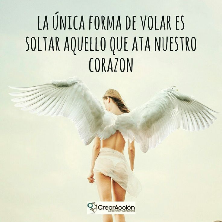 El miedo y el rencor no nos dejan volar, el amor y el perdón nos liberan