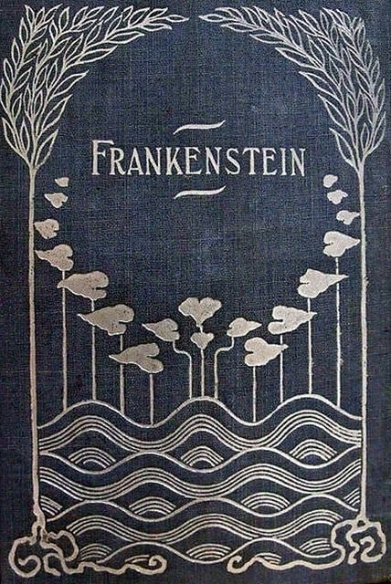 the beauty of identity in frankenstein by mary shelley Below is a complete analysis of mary shelley's first novel frankenstein which   more than sister – the beautiful and adored companion of all my occupations   he could have saved their lives but chose to keep the monster's identity hidden.