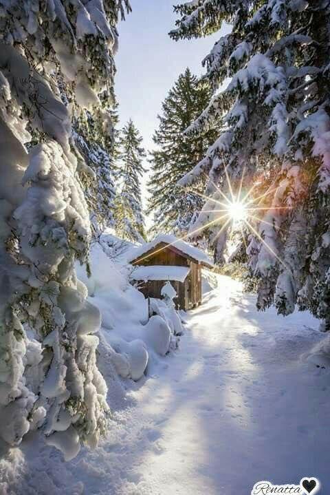 Amanecer en la nieve!!♡