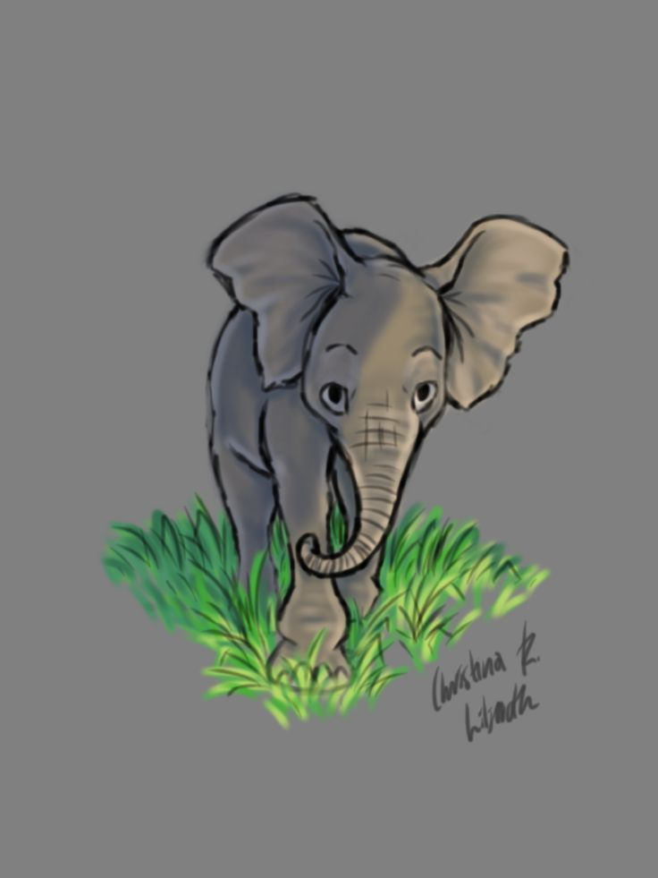 Baby Elephant; drawings by ArtWolf