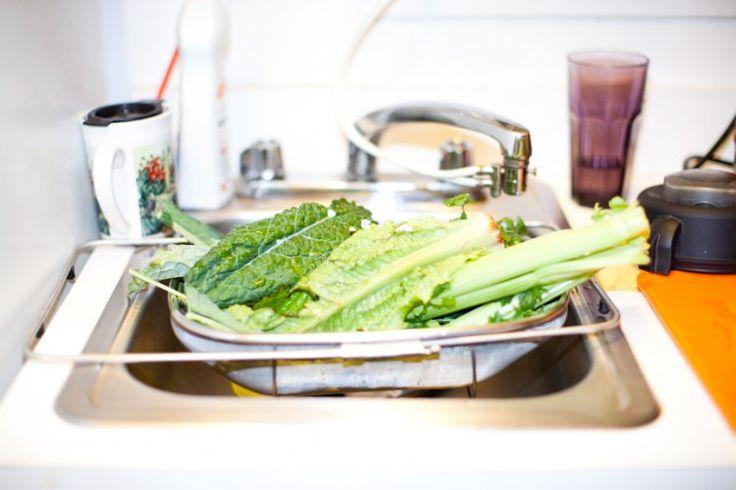 Romain lettuce in the sink