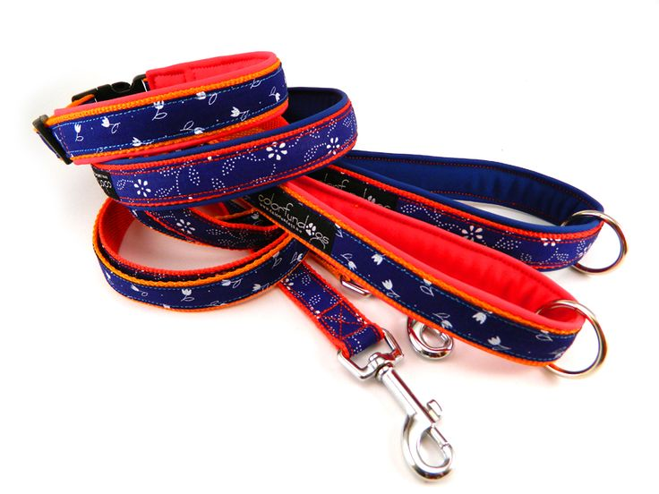 Floral tape leash and collar. #colorfundogs