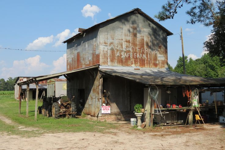 "Brothers Farm in LaGrange, NC. Often featured on PBS show ""Chef and the Farmer""."