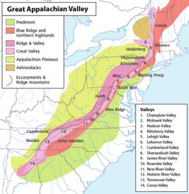 The floras of the Appalachians are diverse and vary primarily in response to geology, latitude, elevation and moisture availability